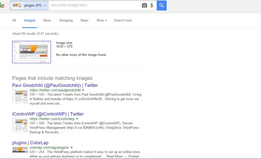 reverse image search result